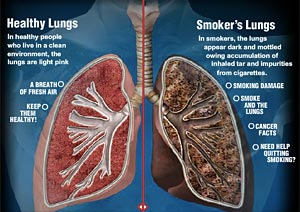 Ways to make lungs strong
